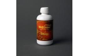 Energy Well Grow