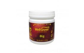 Big Well Grow